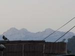Rooftops of Debulla