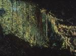 Cave Near Falls of Yayacopí