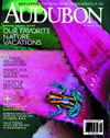 Audobon: October 2000